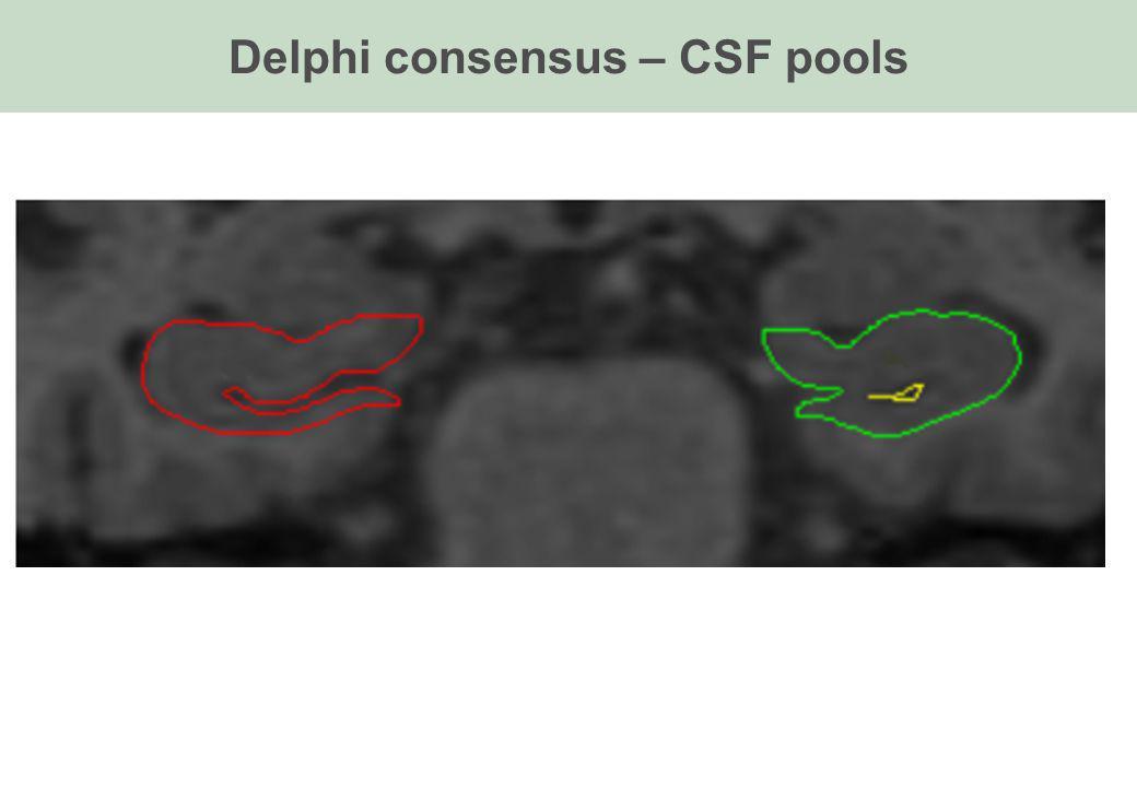 Delphi consensus – CSF pools