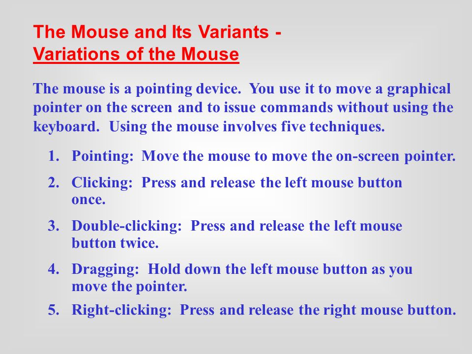 Using a Mouse Variations of the Mouse The Mouse and Its Variants