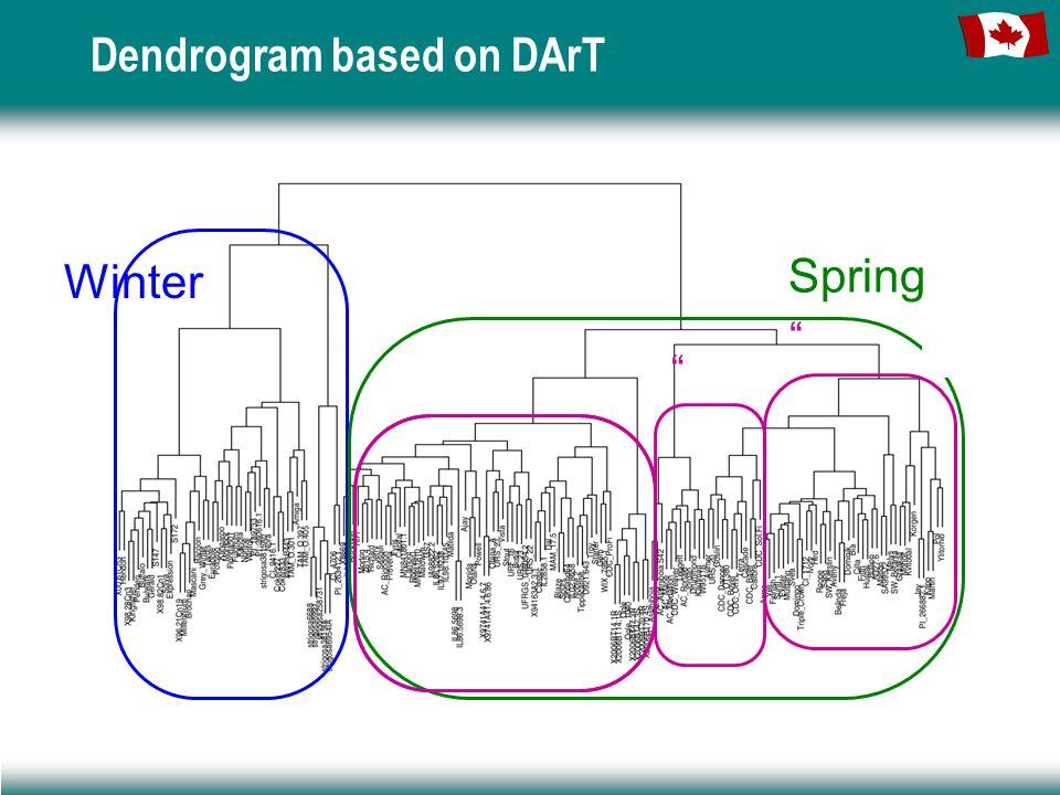 Winter Spring Dendrogram based on DArT