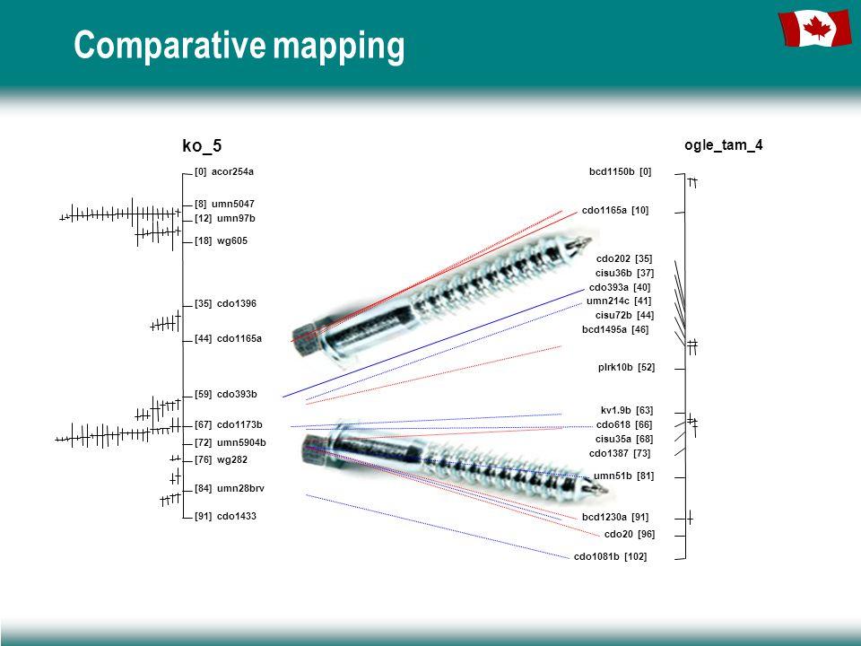 Comparative mapping ko_5 [0] acor254a [8] umn5047 [12] umn97b [18] wg605 [35] cdo1396 [44] cdo1165a [59] cdo393b [67] cdo1173b [72] umn5904b [76] wg282 [84] umn28brv [91] cdo1433 ogle_tam_4 bcd1150b [0] cdo1165a [10] cdo202 [35] cisu36b [37] cdo393a [40] umn214c [41] cisu72b [44] bcd1495a [46] plrk10b [52] kv1.9b [63] cdo618 [66] cisu35a [68] cdo1387 [73] umn51b [81] bcd1230a [91] cdo20 [96] cdo1081b [102]