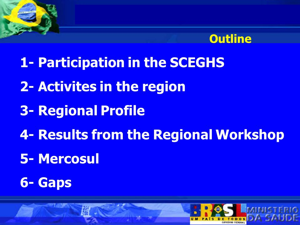 Outline 1- Participation in the SCEGHS 2- Activites in the region 3- Regional Profile 4- Results from the Regional Workshop 5- Mercosul 6- Gaps