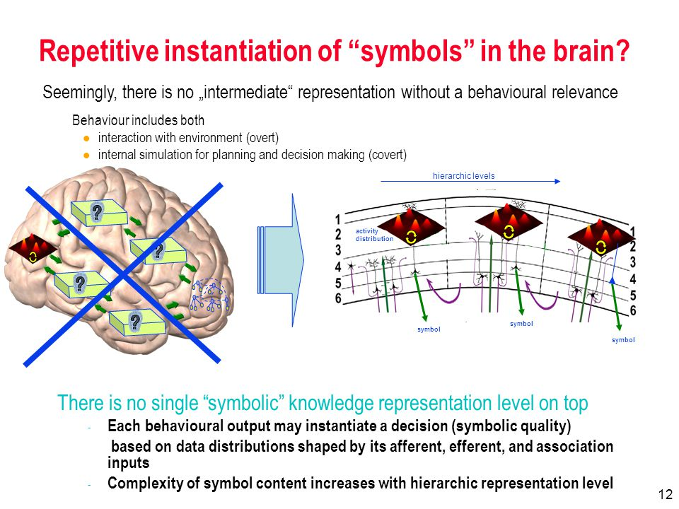 12 Repetitive instantiation of symbols in the brain.