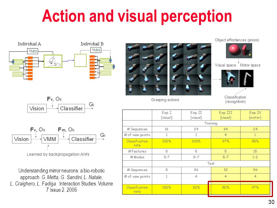 30 Action and visual perception Understanding mirror neurons: a bio-robotic approach.