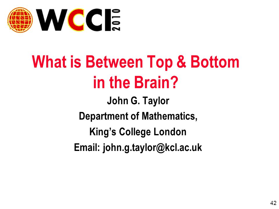 42 What is Between Top & Bottom in the Brain. John G.