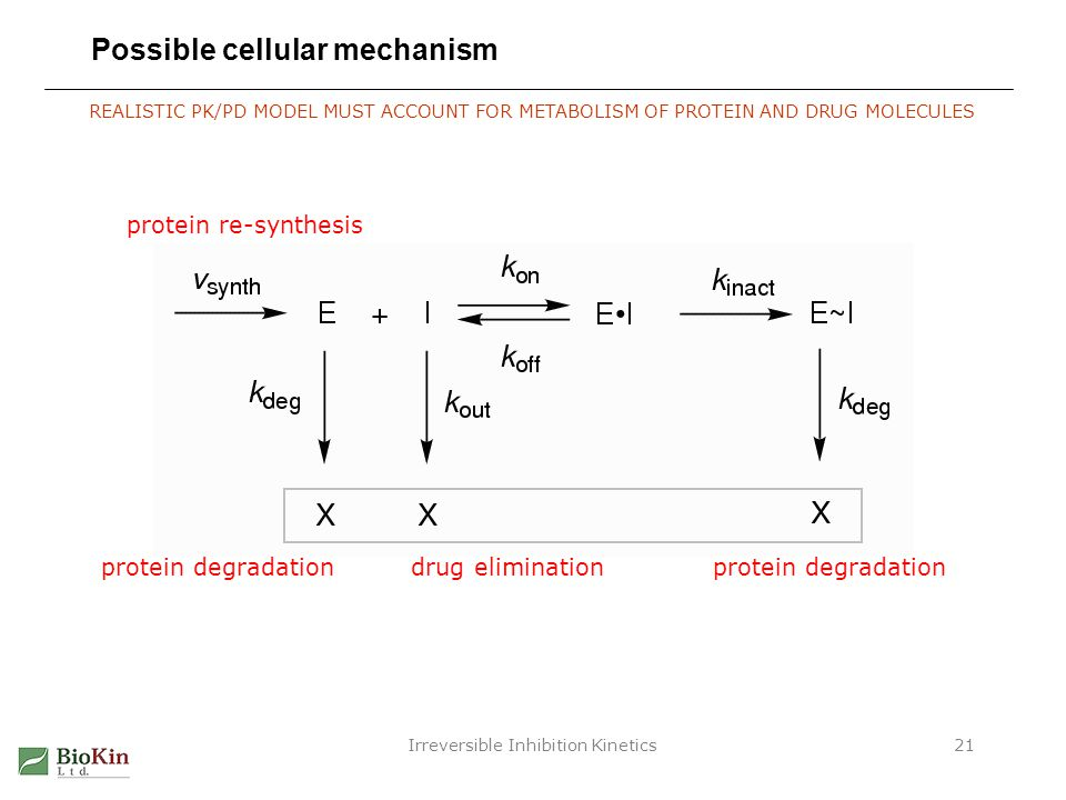 Irreversible Inhibition Kinetics21 Possible cellular mechanism protein re-synthesis protein degradationdrug eliminationprotein degradation REALISTIC P