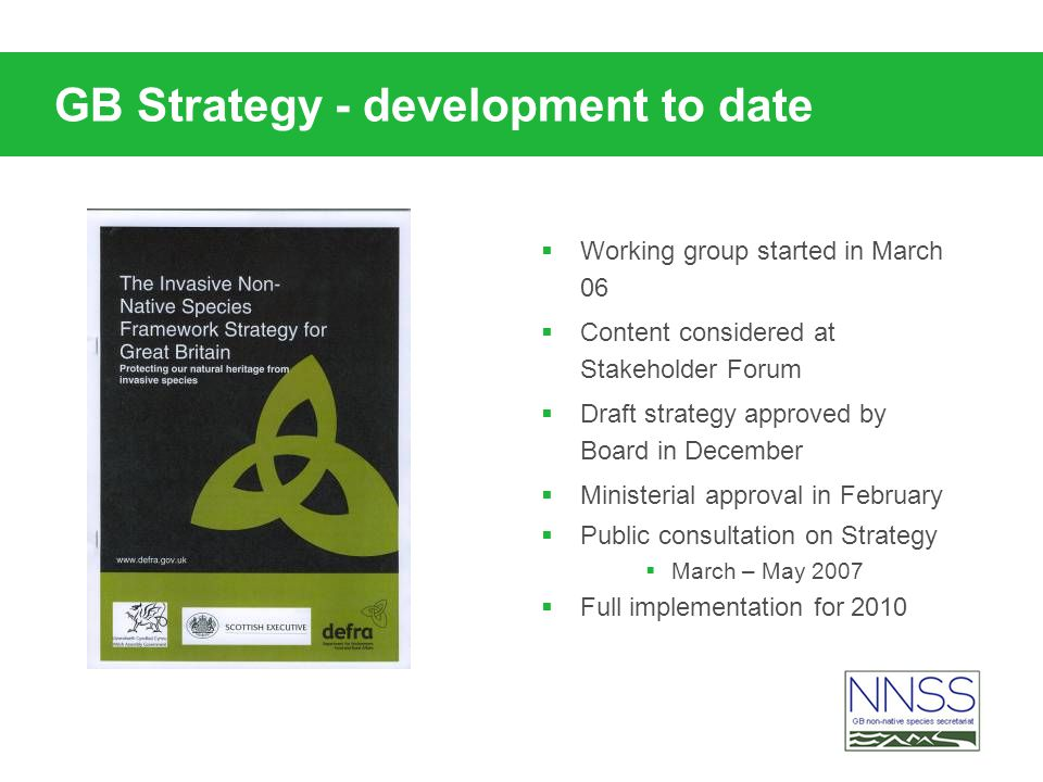 GB Strategy - development to date Working group started in March 06 Content considered at Stakeholder Forum Draft strategy approved by Board in Decemb