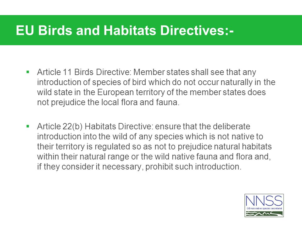 EU Birds and Habitats Directives:- Article 11 Birds Directive: Member states shall see that any introduction of species of bird which do not occur naturally in the wild state in the European territory of the member states does not prejudice the local flora and fauna.
