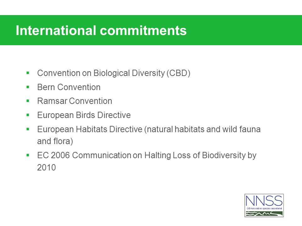 International commitments Convention on Biological Diversity (CBD) Bern Convention Ramsar Convention European Birds Directive European Habitats Directive (natural habitats and wild fauna and flora) EC 2006 Communication on Halting Loss of Biodiversity by 2010