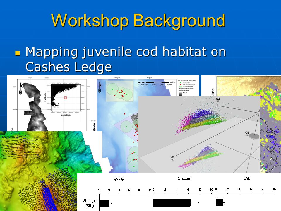 Workshop Background Mapping juvenile cod habitat on Cashes Ledge Mapping juvenile cod habitat on Cashes Ledge