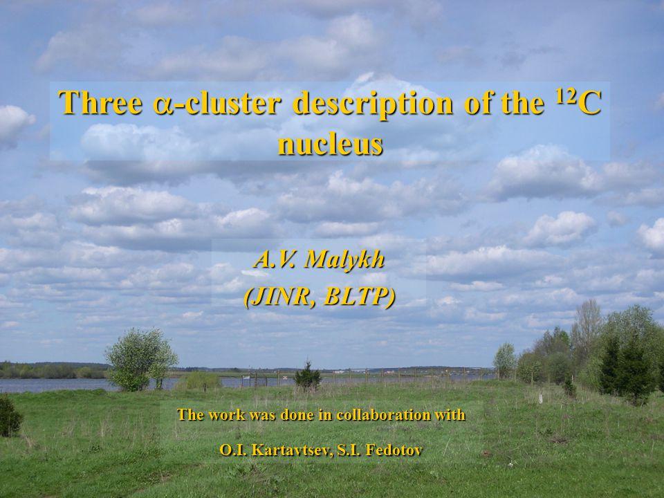 Three -cluster description of the 12 C nucleus A.V.