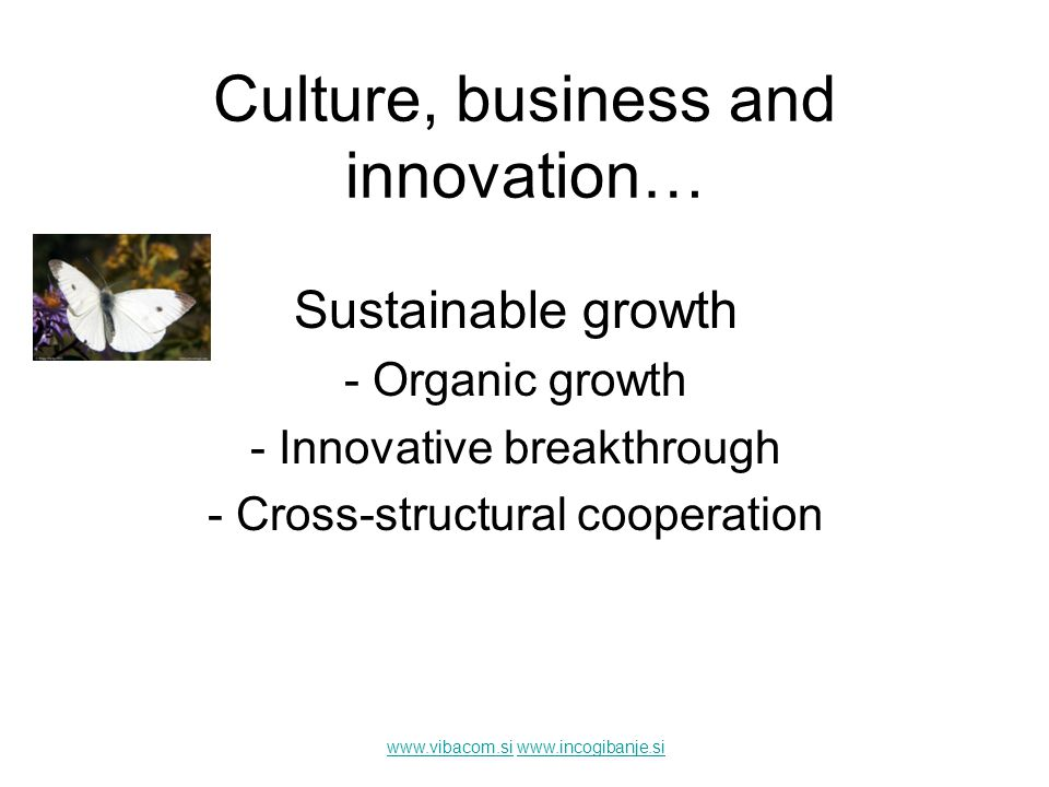 www.vibacom.siwww.vibacom.si www.incogibanje.siwww.incogibanje.si Sustainable growth - Organic growth - Innovative breakthrough - Cross-structural coo