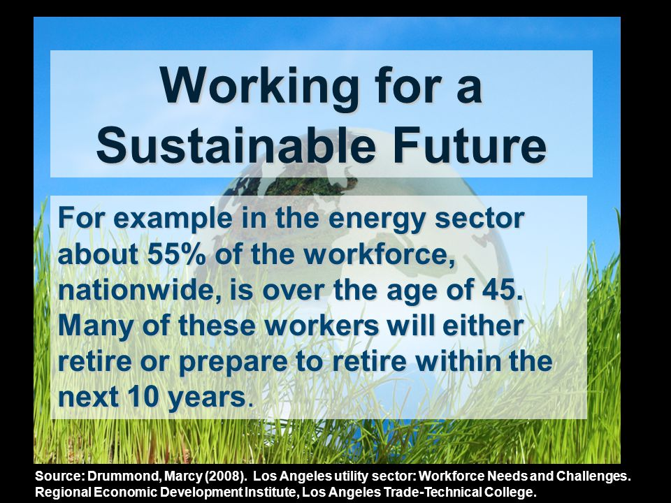 Working for a Sustainable Future For example in the energy sector about 55% of the workforce, nationwide, is over the age of 45.