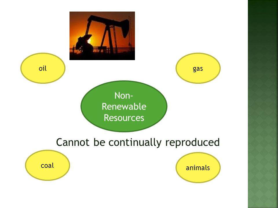 oilgas coal animals Non- Renewable Resources Cannot be continually reproduced