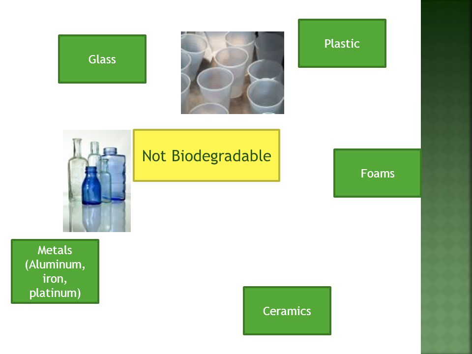 Not Biodegradable Glass Ceramics Metals (Aluminum, iron, platinum) Foams Plastic