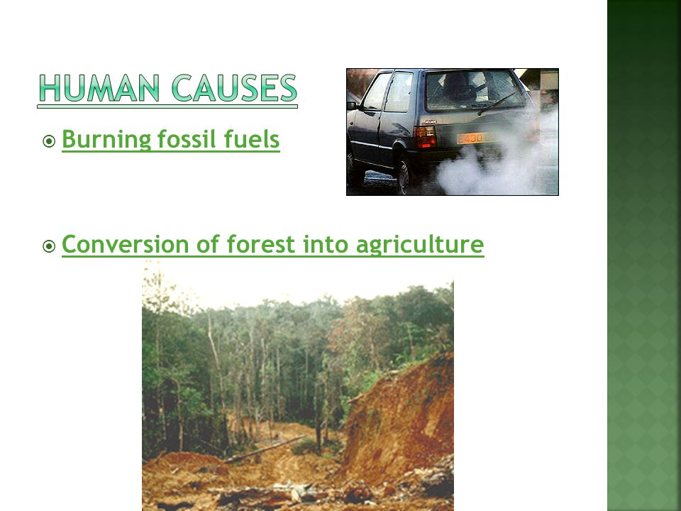 Burning fossil fuels Conversion of forest into agriculture