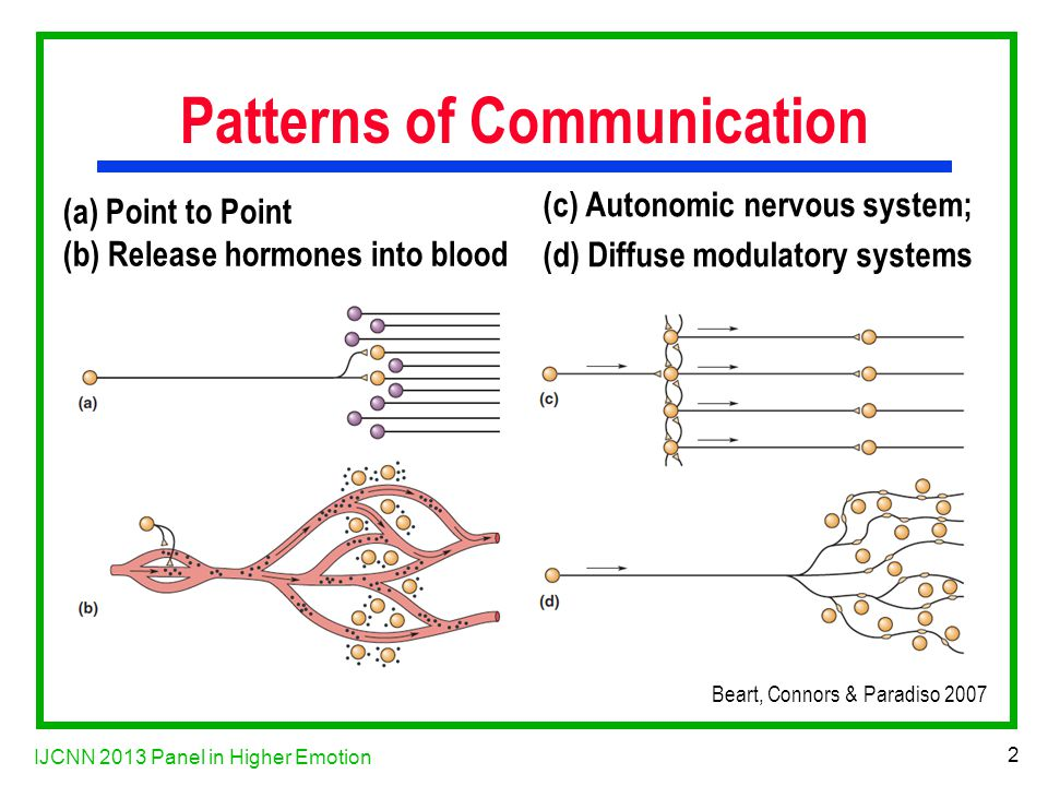 IJCNN 2013 Panel in Higher Emotion 2 Patterns of Communication (a) Point to Point (b) Release hormones into blood (c) Autonomic nervous system; (d) Diffuse modulatory systems Beart, Connors & Paradiso 2007