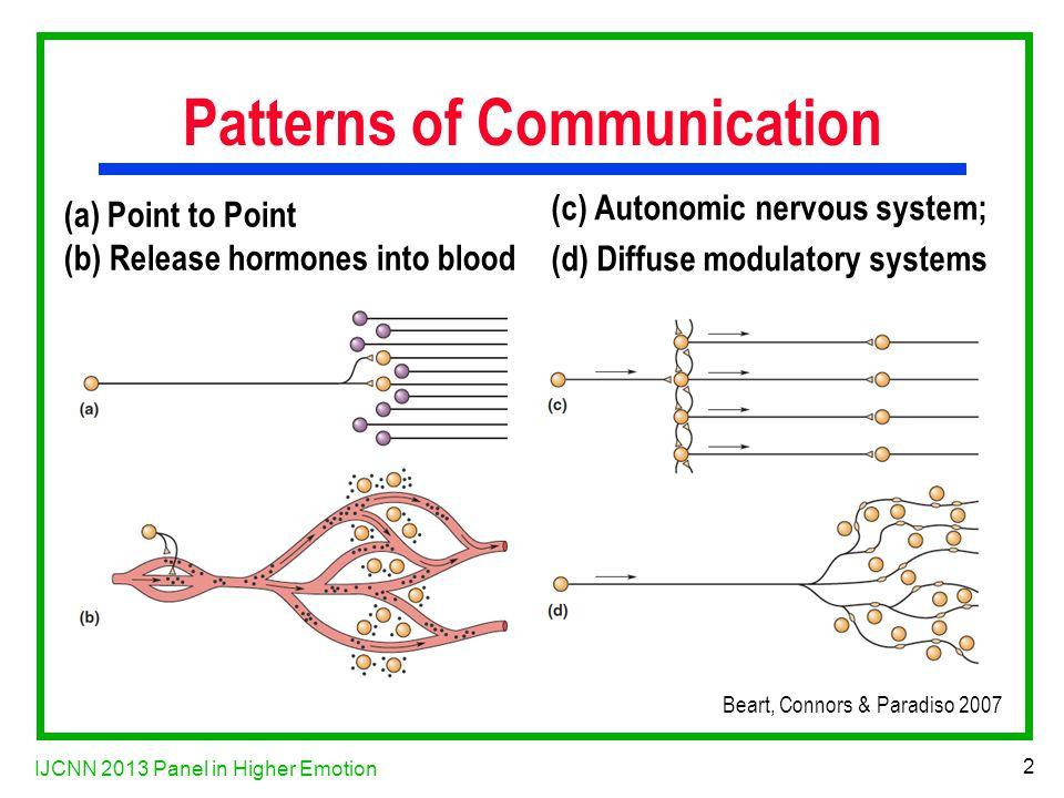 IJCNN 2013 Panel in Higher Emotion 23 Acetylcholine System