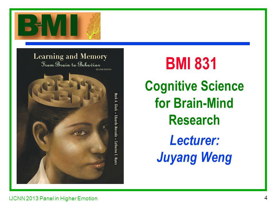 IJCNN 2013 Panel in Higher Emotion 35 ACh Estimates