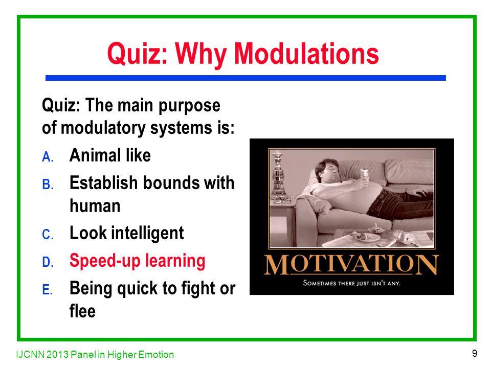 IJCNN 2013 Panel in Higher Emotion 10 Why Motivation.