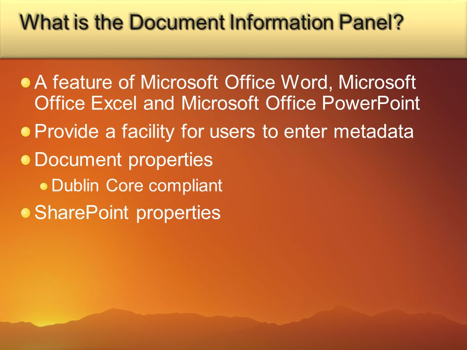 What is the Document Information Panel.