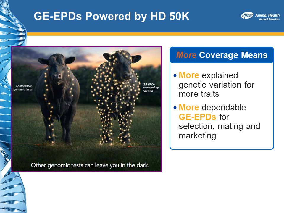 GE-EPDs Powered by HD 50K More Coverage Means More explained genetic variation for more traits More dependable GE-EPDs for selection, mating and marke