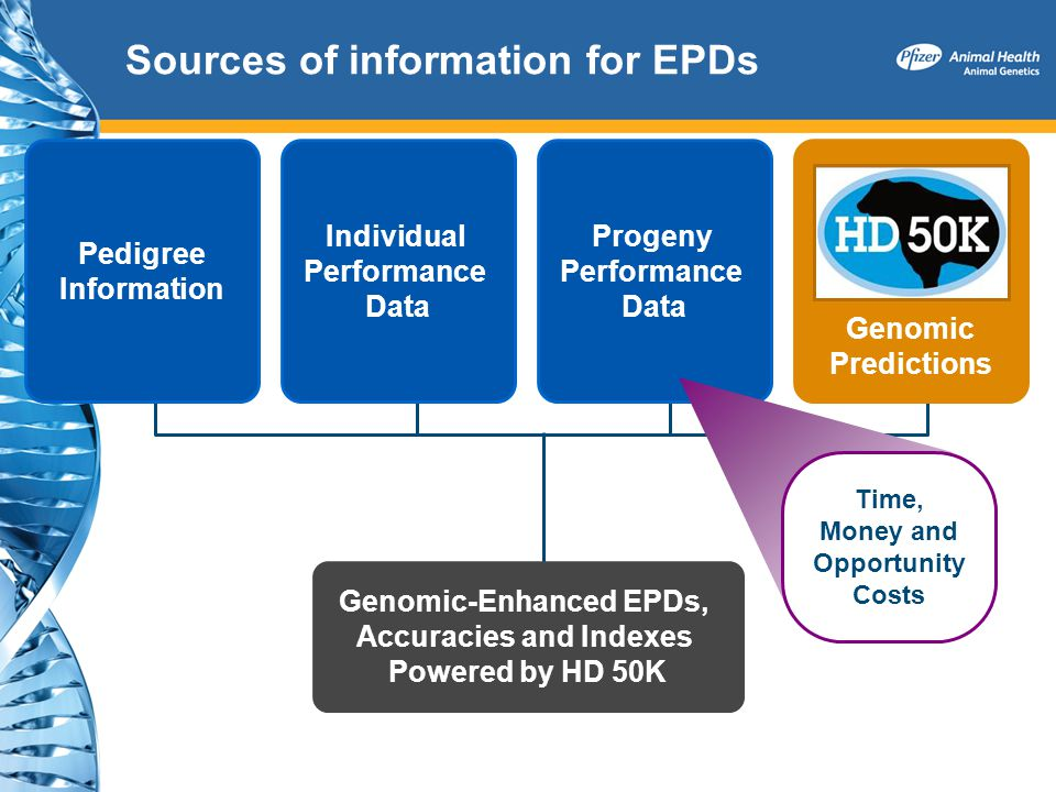 Sources of information for EPDs Pedigree Information Individual Performance Data Progeny Performance Data Genomic Predictions Genomic-Enhanced EPDs, A