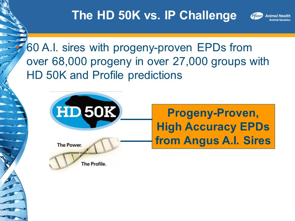 The HD 50K vs. IP Challenge 60 A.I. sires with progeny-proven EPDs from over 68,000 progeny in over 27,000 groups with HD 50K and Profile predictions