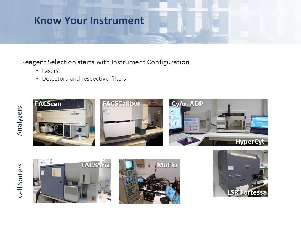 Reagent Selection starts with Instrument Configuration Lasers Detectors and respective filters Analyzers Cell Sorters FACSCalibur FACScan MoFlo FACSAr