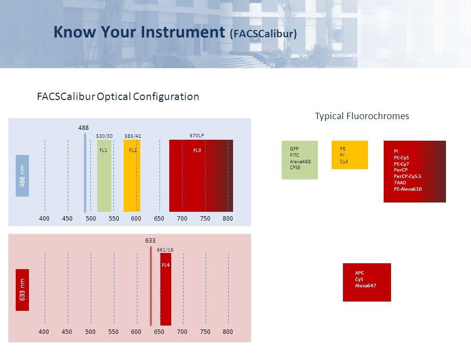 Know Your Instrument (FACSCalibur) FACSCalibur Optical Configuration Typical Fluorochromes 400450500550600650700750800 488 530/30585/42 670LP FL1FL2FL