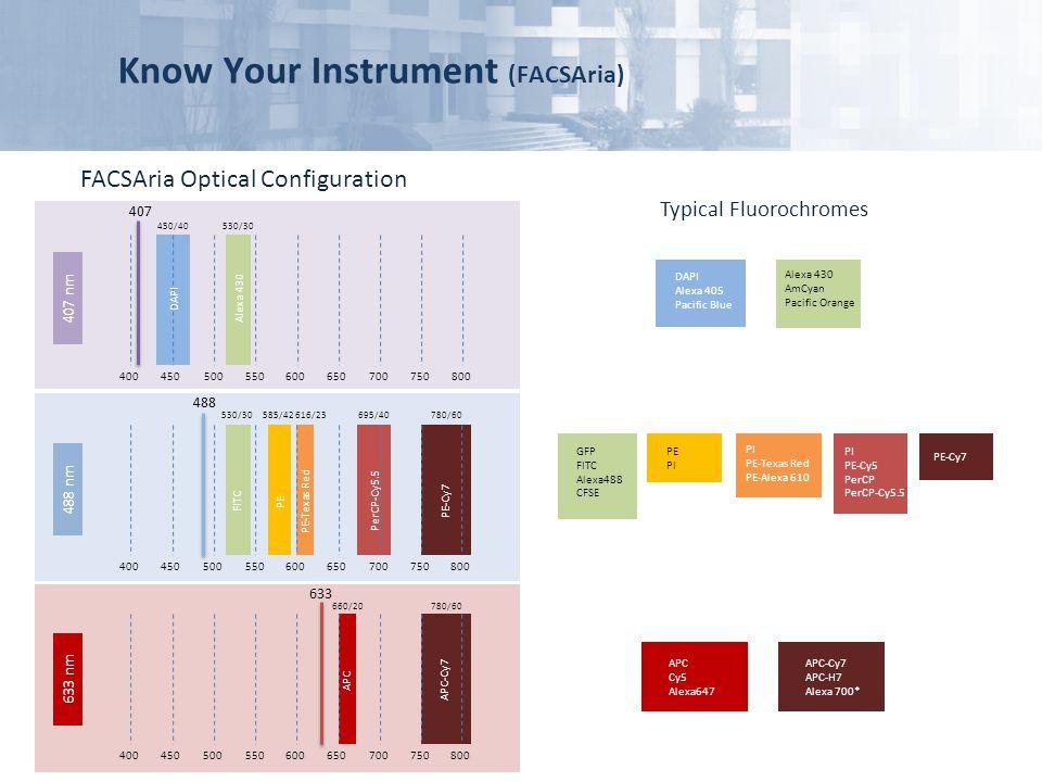 Know Your Instrument (FACSAria) FACSAria Optical Configuration GFP FITC Alexa488 CFSE PE PI PI PE-Cy5 PerCP PerCP-Cy5.5 Typical Fluorochromes 407 nm 6