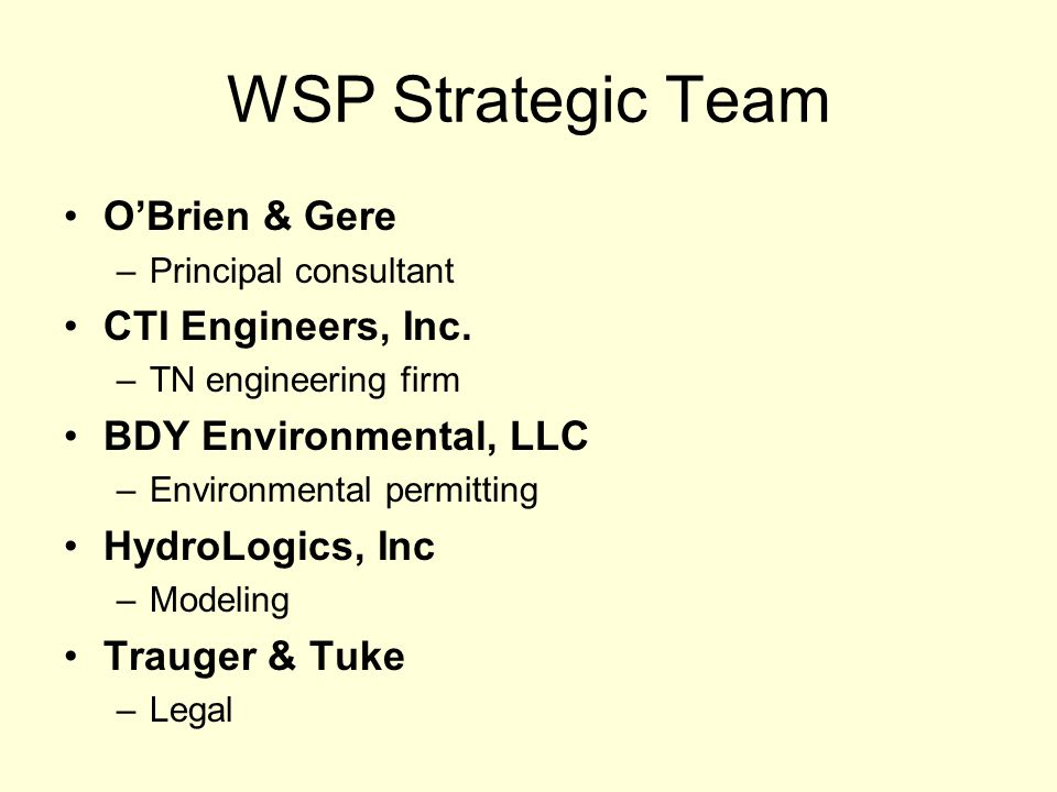 WSP Strategic Team OBrien & Gere –Principal consultant CTI Engineers, Inc.