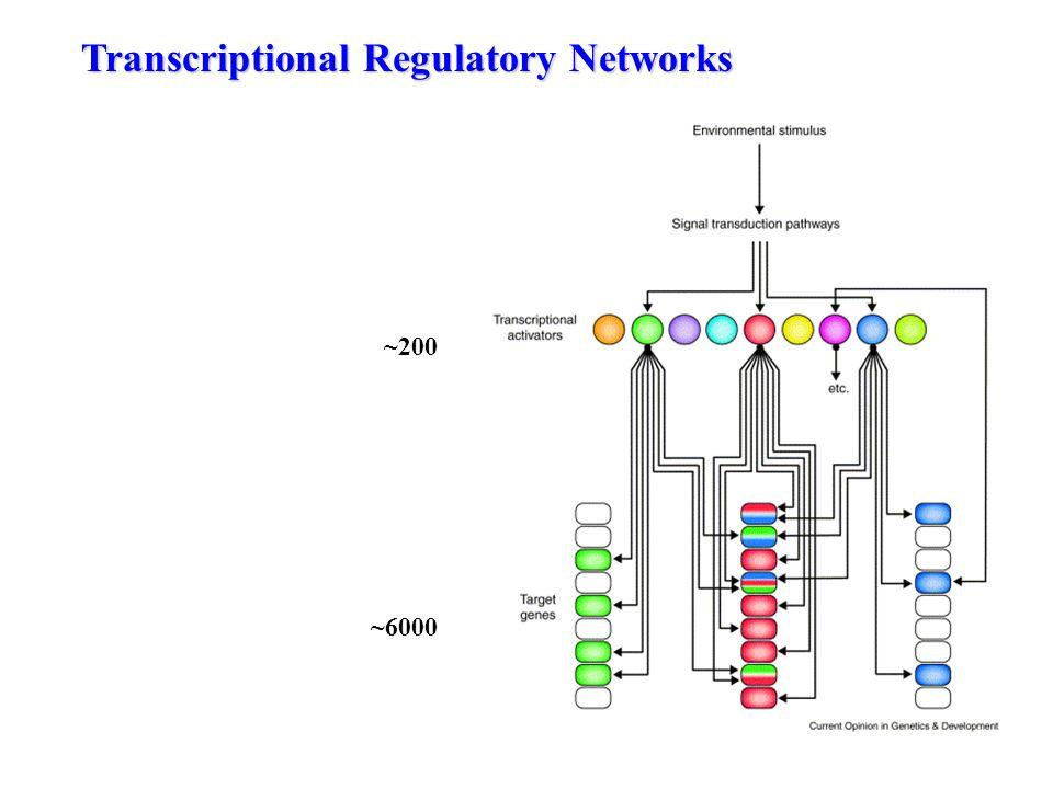 The transcriptional response to stress ESR repressed ESR induced