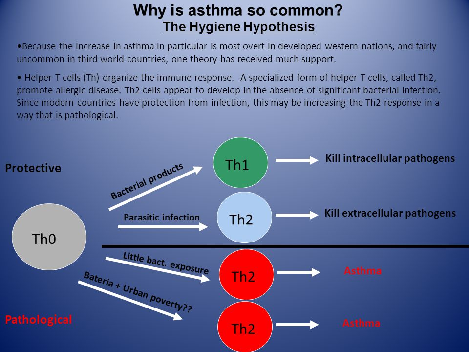 Why is asthma so common.