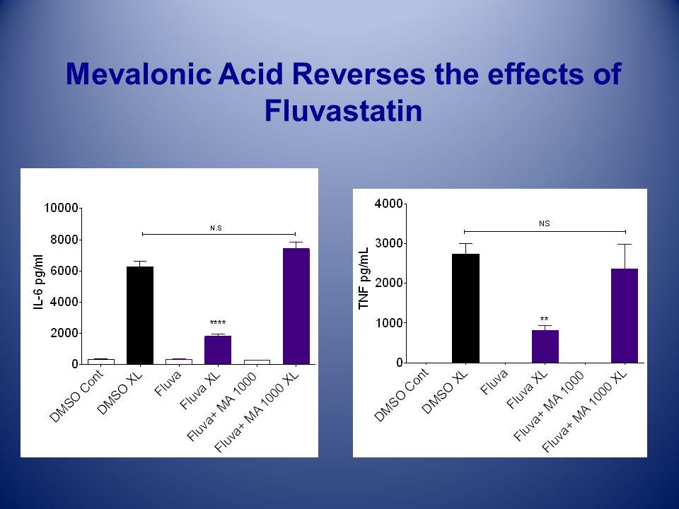Mevalonic Acid Reverses the effects of Fluvastatin