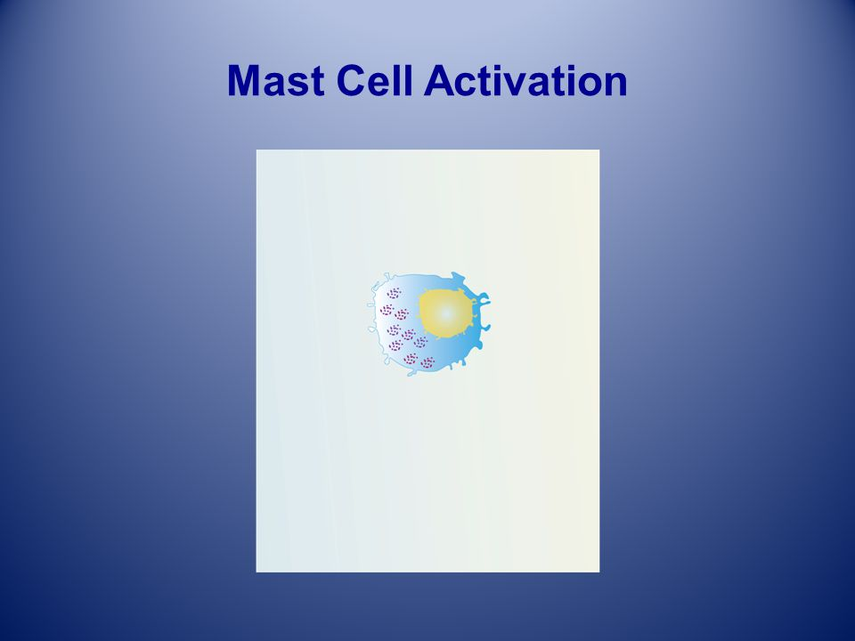 Mast Cell Activation