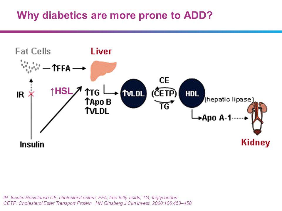 Why diabetics are more prone to ADD? HSL IR: Insulin Resistance CE, cholesteryl esters; FFA, free fatty acids; TG, triglycerides. CETP: Cholesterol Es