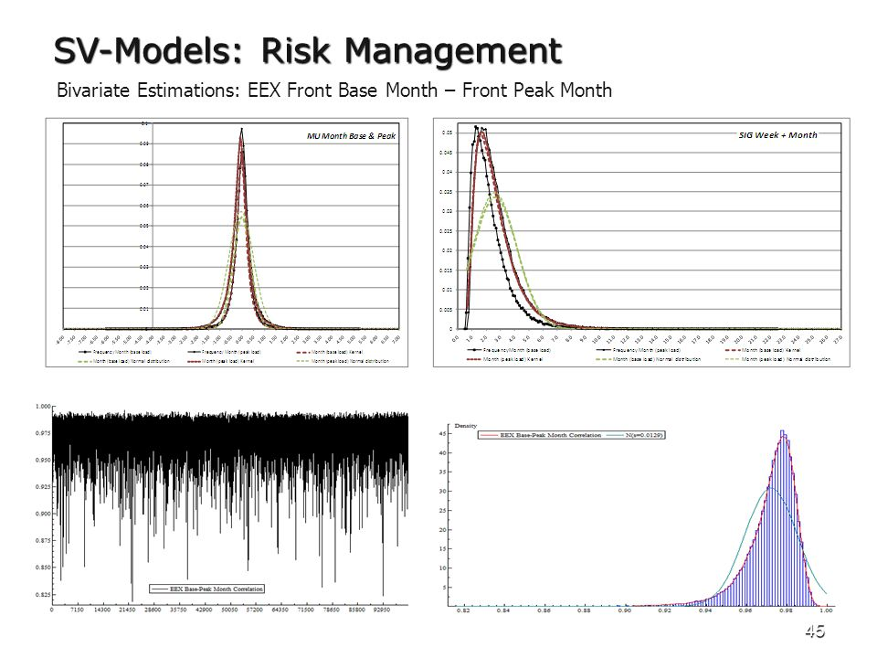 45 SV-Models: Risk Management Bivariate Estimations: EEX Front Base Month – Front Peak Month