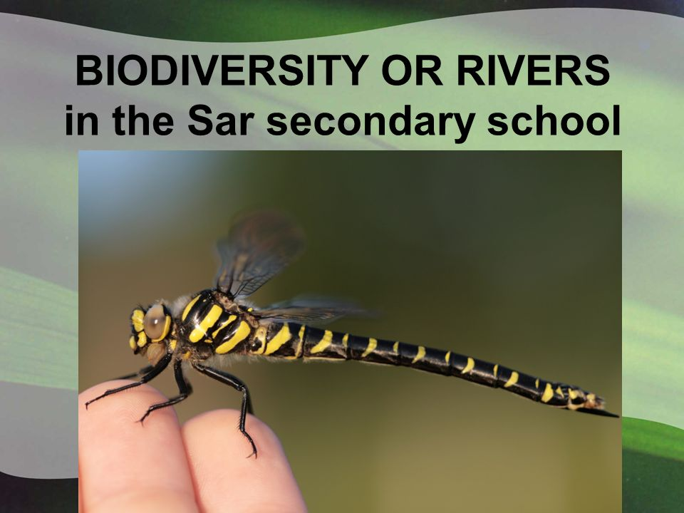 BIODIVERSITY OR RIVERS in the Sar secondary school