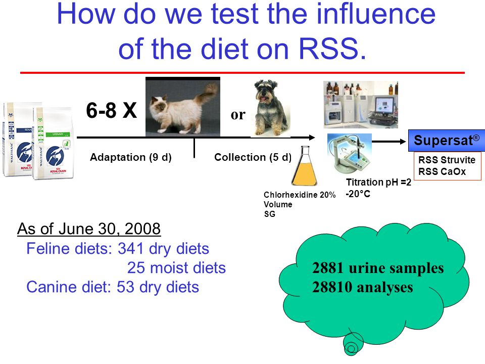 How do we test the influence of the diet on RSS. Adaptation (9 d)Collection (5 d) Supersat ® RSS Struvite RSS CaOx 6-8 X As of June 30, 2008 Feline di