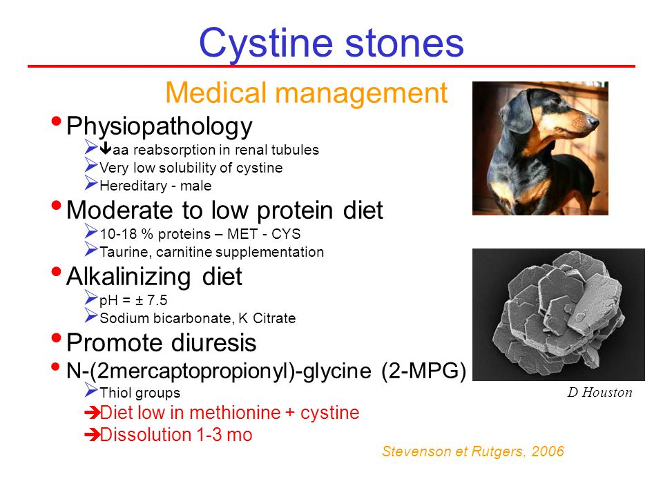 Cystine stones Stevenson et Rutgers, 2006 Medical management Physiopathology aa reabsorption in renal tubules Very low solubility of cystine Hereditar