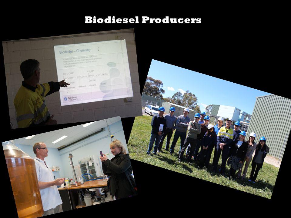 Biodiesel Producers