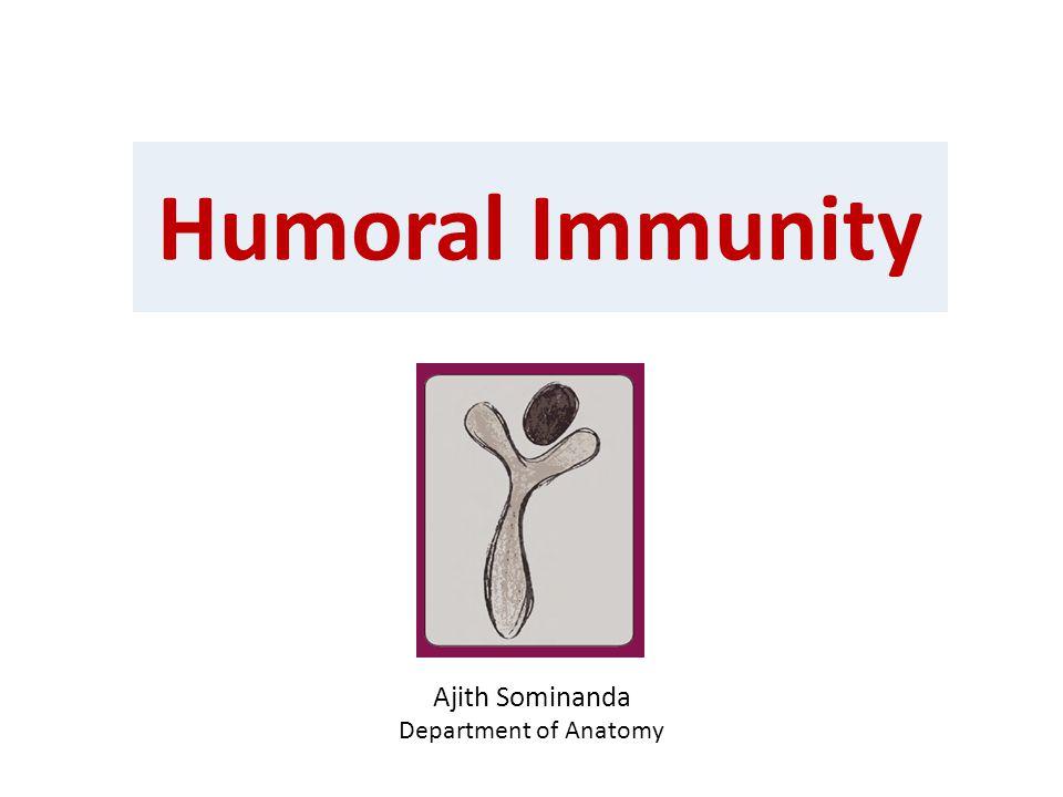 Humoral Immunity Ajith Sominanda Department of Anatomy