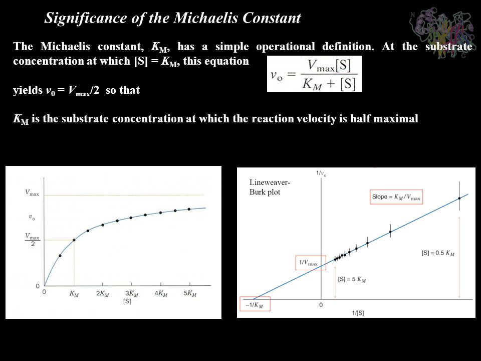 Significance of the Michaelis Constant The Michaelis constant, K M, has a simple operational definition. At the substrate concentration at which [S] =