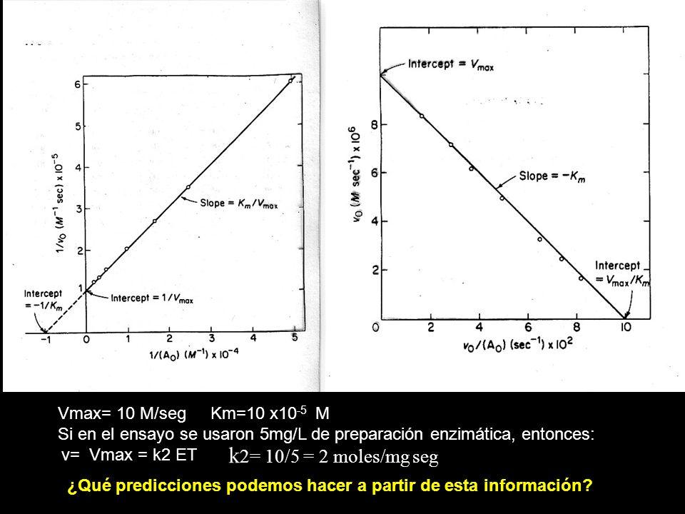 Vmax= 10 M/seg Km=10 x10 -5 M Si en el ensayo se usaron 5mg/L de preparación enzimática, entonces: v= Vmax = k2 ET k 2= 10/5 = 2 moles/mg seg ¿Qué pre