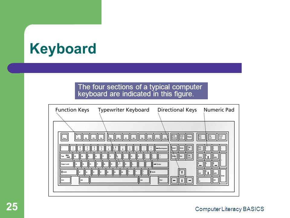 Computer Literacy BASICS 25 Keyboard The four sections of a typical computer keyboard are indicated in this figure.