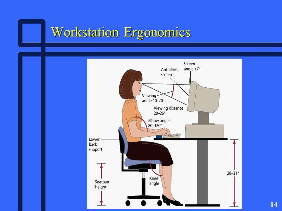 14 Workstation Ergonomics