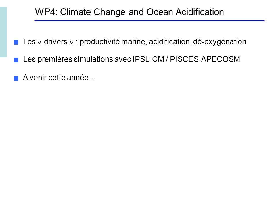 WP4: Climate Change and Ocean Acidification Les « drivers » : productivité marine, acidification, dé-oxygénation Les premières simulations avec IPSL-CM / PISCES-APECOSM A venir cette année…