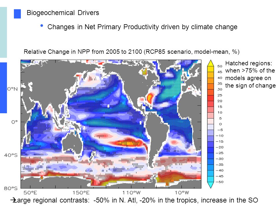 Biogeochemical Drivers Changes in Net Primary Productivity driven by climate change Relative Change in NPP from 2005 to 2100 (RCP85 scenario, model-mean, %) Hatched regions: when >75% of the models agree on the sign of change Large regional contrasts: -50% in N.