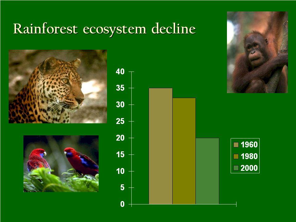 Rainforest ecosystem decline