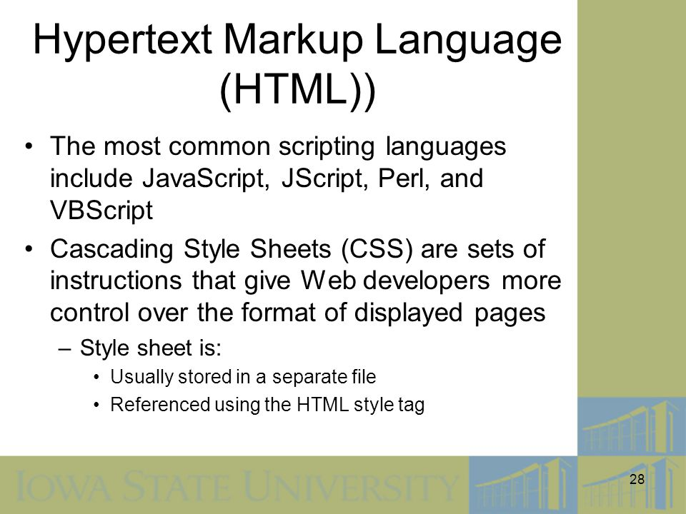28 Hypertext Markup Language (HTML)) The most common scripting languages include JavaScript, JScript, Perl, and VBScript Cascading Style Sheets (CSS)